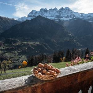Noix de la ferme des Lisats à Val d'Illiez produits frais de la vallée